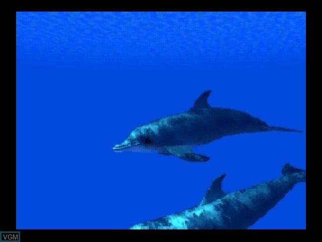 In-game screen of the game Aqua World - Umibi Monogatari on 3DO