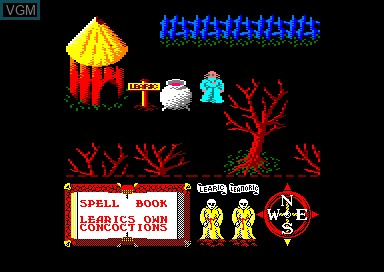 In-game screen of the game Feud on Amstrad CPC