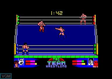 Tag Team Wrestling