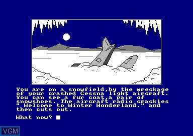 In-game screen of the game Winter Wonderland on Amstrad CPC