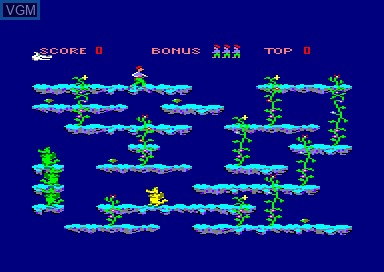 In-game screen of the game Game of Dragons, The on Amstrad CPC