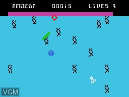 In-game screen of the game Evolution on Coleco Industries Colecovision