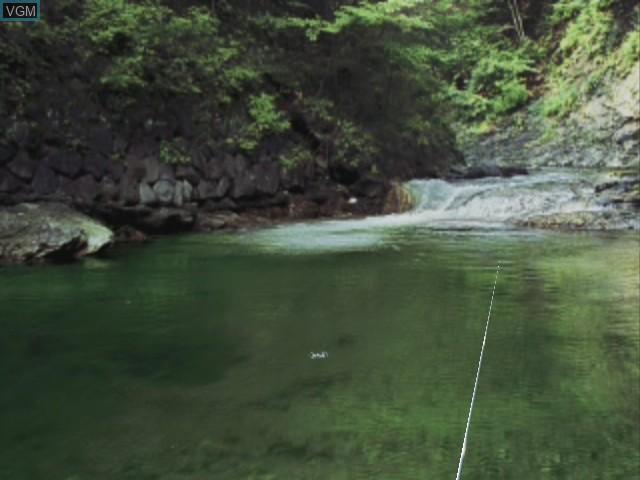 Reel Fishing - Wild