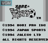 Title screen of the game Ace Striker on Nintendo Game Boy