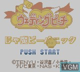 Title screen of the game Wedding Peach - Jamapii Panic on Nintendo Game Boy