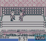 Zen-Nippon Pro Wrestling Jet