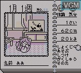 In-game screen of the game Animal Breeder on Nintendo Game Boy