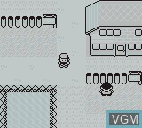 In-game screen of the game Pokemon - Blue Version on Nintendo Game Boy
