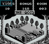 In-game screen of the game Adventures of Pinocchio, The on Nintendo Game Boy