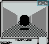 In-game screen of the game Faceball 2000 on Nintendo Game Boy