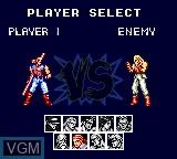 Menu screen of the game Fatal Fury Special on Sega Game Gear
