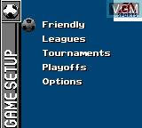 Menu screen of the game FIFA Soccer 96 on Sega Game Gear