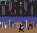 In-game screen of the game Adventures of Batman & Robin, The on Sega Game Gear