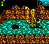 In-game screen of the game Battletoads on Sega Game Gear