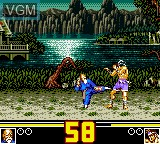In-game screen of the game Fatal Fury Special on Sega Game Gear