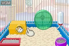 Hamster Gurakubu 3