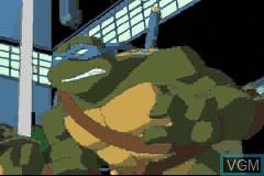 Teenage Mutant Ninja Turtles - Volume 1