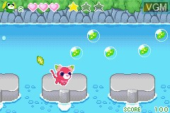 In-game screen of the game Ochaken no Bouken-jima - Honwaka Yume no Island on Nintendo GameBoy Advance