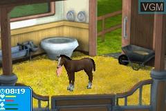 Pferd & Pony - Best Friends - Mein Pferd