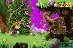 Winnie the Pooh's Rumbly Tumbly Adventure & Rayman 3