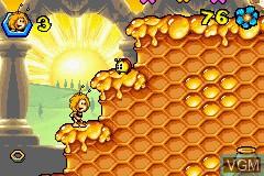 Die Biene Maja - Susses Gold