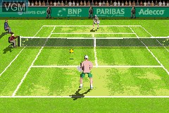 In-game screen of the game Davis Cup on Nintendo GameBoy Advance