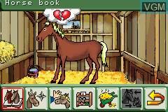 In-game screen of the game Pferd & Pony - Mein Pferdehof on Nintendo GameBoy Advance