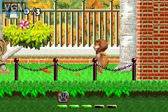 In-game screen of the game 2-in-1 Fun Pack - Shrek 2 + Madagascar on Nintendo GameBoy Advance