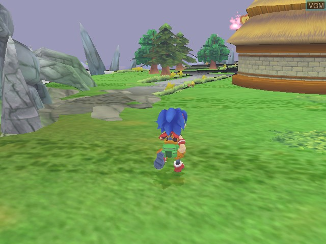 In-game screen of the game Amazing Island on Nintendo GameCube