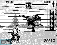 In-game screen of the game Fighters Megamix on Tiger Game.com