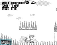 In-game screen of the game Sonic Jam on Tiger Game.com