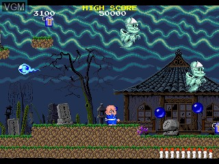 In-game screen of the game Bonze Adventure on MAME