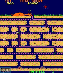 In-game screen of the game Anteater on MAME