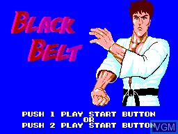 Title screen of the game Black Belt on Sega Master System