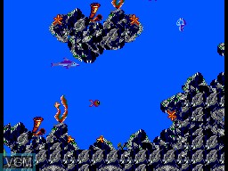 Menu screen of the game Ecco the Dolphin - Tides of Time on Sega Master System
