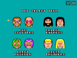 Menu screen of the game Pro Wrestling on Sega Master System