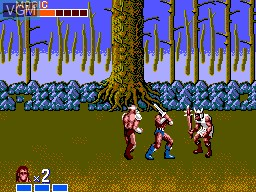 In-game screen of the game Golden Axe on Sega Master System