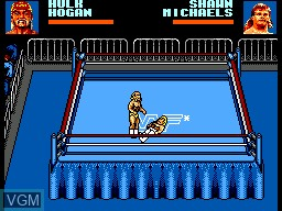 In-game screen of the game WWF Wrestlemania Steel Cage Challenge on Sega Master System