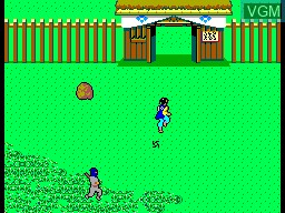 In-game screen of the game Ninja, The on Sega Master System