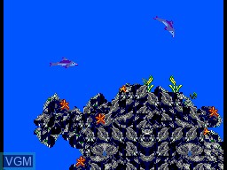 In-game screen of the game Ecco the Dolphin - Tides of Time on Sega Master System