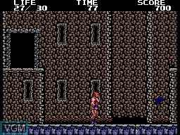 In-game screen of the game Danan the Jungle Fighter on Sega Master System