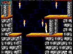 In-game screen of the game Prince of Persia on Sega Master System