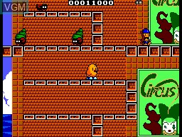 In-game screen of the game New Zealand Story, The on Sega Master System