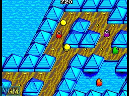 In-game screen of the game Pac-Mania on Sega Master System