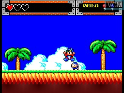 In-game screen of the game Wonder Boy in Monster World on Sega Master System
