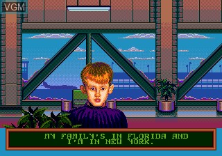 home alone 2 video game
