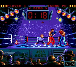 In-game screen of the game Best of the Best - Championship Karate on Sega Megadrive