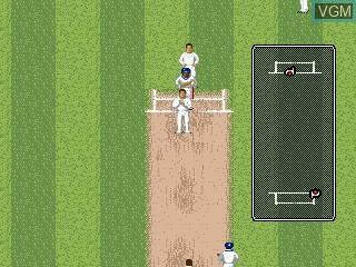 In-game screen of the game Brian Lara Cricket 96 on Sega Megadrive