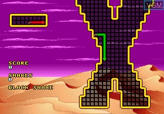 In-game screen of the game Wild Snake on Sega Megadrive