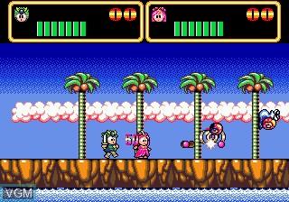 In-game screen of the game Wonder Boy III - Monster Lair on Sega Megadrive